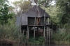 Treehouse 10, from the Kavango River, Ngepi Camp, Namibia