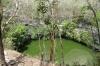 Cenote Sagrado. Chichen Itza