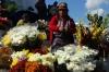 Flowers outside Iglesia Santo Tomas. Market day in Chichicastenango