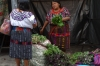 Fresh herbs. Not market day in Chichicastenango - a smaller market still exists