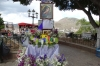 Festival of Flowers, Guanajuato