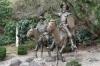 One of many Don Quixote statues in Guanajuato