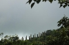 Wisdom Path walk, Lantau Island, Hong Kong