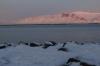 Waterfront in Reykjavik