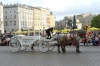 Horse buggy's in Main Market Square, Kraków PL