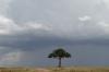 Masaimura National Reserve, Kenya
