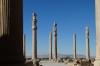 Apadana Palace. 20m columns