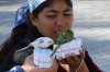 "Gypsies selling ""good luck"" with budgerigars that pick out propositions - sad"