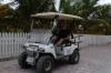 Bruce & the cart
