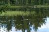 Enonvesi Lake FI