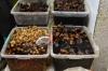 Mostly garlic. Tabriz Bazaar